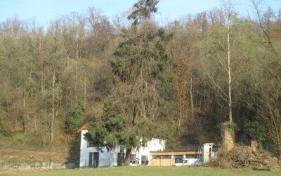 Centro Parco Spina Verde